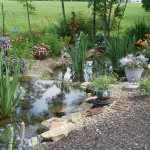 Susan Withers of Greenford, Ohio, grows lilies, geraniums and scaevola in her water garden.