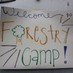 forestry camp poster.JPG