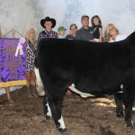 Portage res steer