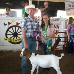 Courtney Hephner earned reserve champion goat project honors and sold her 88-pound goat to Crabb Insurance, represented by David Mollenkopf.