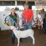 Hannah Swope's reserve champion best project sold for $2.75 a pound to Carrollton Farmers Exchange, represented by Bruce Burgett.
