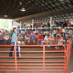 lamb sale crowd.JPG