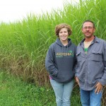 Miscanthus people