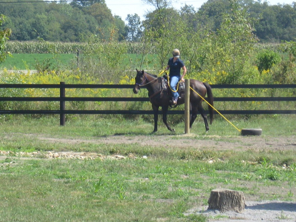 Since horses are flight animals, their first instinct is to run if something scares them. The idea of this obstacle is to get them used to pulling something behind them, for example, if someone would need to be removed from the woods because of an injury.