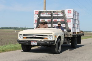 Farm workers transporting produce on the back of a truck.