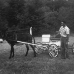 (Submitted by Wayne Cooper)Wayne Cooper Sr. poses with his donkey, Jenny. According to his son, Wayne Cooper Jr., he loved to take his grandchildren for rides in the wagon. This photo was taken in the 1960s.