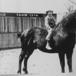 (Submitted by Marilyn Glenn)Nine-year-old Delmar Glenn sits on a horse in front of his family's new barn in Morgan County, Ohio.Delmar's father, Will, is at the reigns.This photo was taken in 1914.