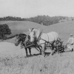 (Submitted by Debbie Scmucker)Harry Winfield Myers plows a field near Salineville, Ohio, in 1925.