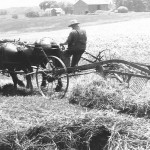 (Submitted by Ila Mix) Pictured is Walter A. Mix working in his fields, in 1943. The barn in this photo is still standing on state Route 225, in Deerfield, Ohio, and is still in the Mix family, and being farmed by great-grandson Jim Mix.