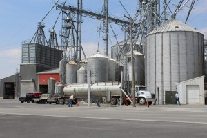 Hord feed mill