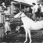 (Submitted by Dale Duerr)Dale Duerr submitted this photo of life on the farm, taken about 1918, in Guernsey County, near Antrim, Ohio. In the photo Novella Morrison Cunningham, standing on the stump, is holding her nephew, Richard Morrison. Two other nephews, Ernest and Clancy Morrison, are standing on the horse, Doc. The little girl wearing the hat is Novella's daughter, Ethel Cunningham, who later moved to Bolivar. Ohio, and married Robert Duerr. She spent the rest of her life on a dairy farm. Ethel Duerr, an avid Farm and Dairy reader, lived to age 100, and passed in April 2013. Dale Duerr is her son.ˆ
