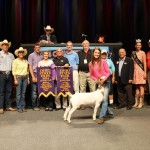 Grand Champion Market Goat Exhibited by: Cami Reveal