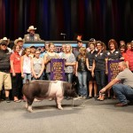 Grand Champion Market Barrow Exhibited by: Hannah Frobose