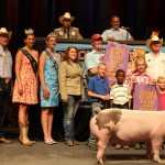 Reserve Grand Champion Market Barrow Exhibited by:  Nicholas Adams