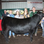 Haley Drake was the senior steer skillathon winner and showed the champion Columbiana County born and raised steer.