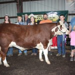 Dylan Foster was the junior steer skillathon winner.