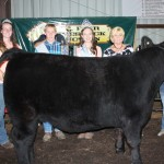 Madison Pidgeon was the intermediate steer showmanship winner, and also showed the Division 3 grand champion.