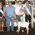 Carter Kitko's reserve champion goat weighing 73 pounds sold for $11 a pound to Ed Ward.